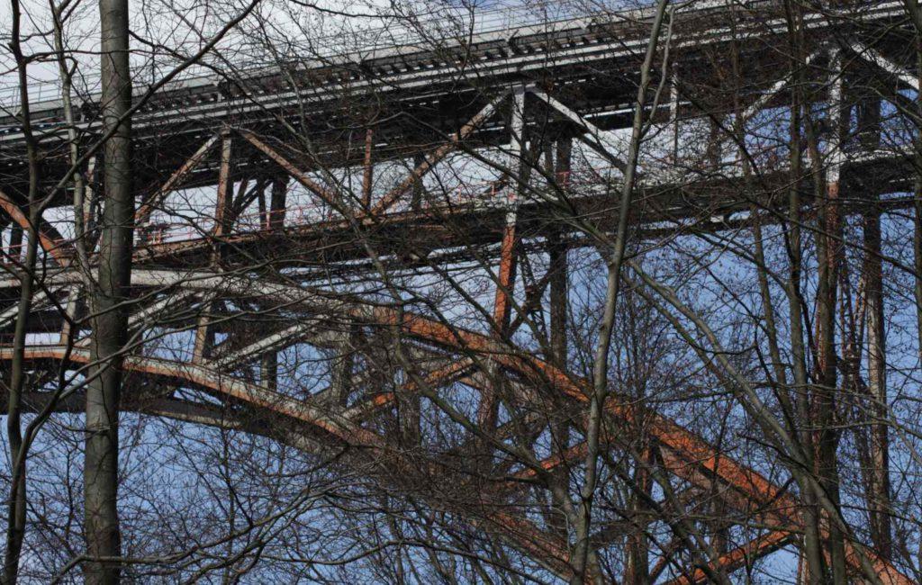 Durcheinander im Wald a.k.a. Müngstener Brücke